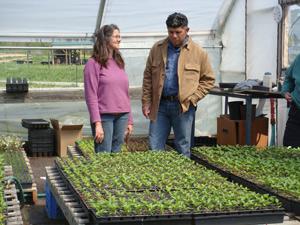 Greenhouse Sperryville, VA Rachel Bynum and Daoud 4/19/10